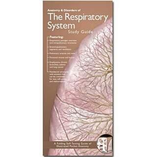 Hengitys anatominen esite