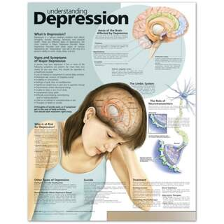 Ymmärtäminen Masennus Englanti Laminated (Understanding Depression)