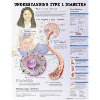 Tyypin 1 diabetes - juliste / suunnitelmat